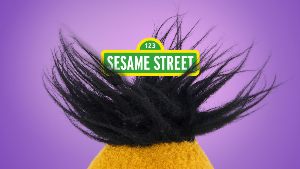 Sesame Street promo toolkit design with Bert hair